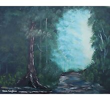 Forest Trail Photographic Print