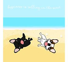 French Bulldogs Rolling In Sand Photographic Print
