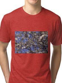 white flowers in spring Tri-blend T-Shirt