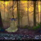 Secrets of the Forest by Cat Perkinton