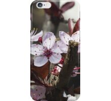 peach flowers iPhone Case/Skin