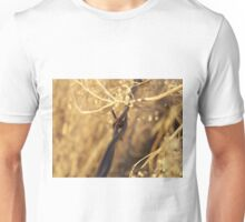 Barbed Wire and Broomweed Unisex T-Shirt
