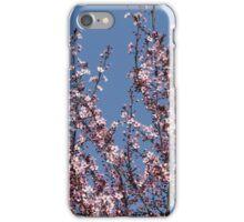 peach blossom in spring iPhone Case/Skin