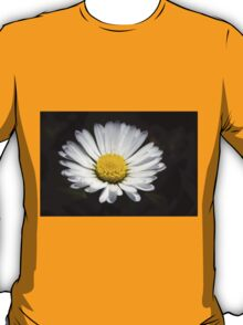 daisy in spring T-Shirt