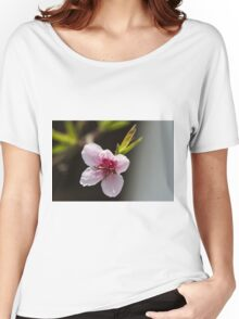 peach blossom in spring Women's Relaxed Fit T-Shirt