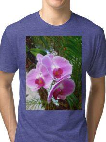 Lavender Orchid Tri-blend T-Shirt