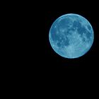 Blue moon by PinkK