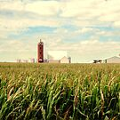 Iowa Farm Land by jewelskings