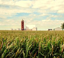 Iowa Farm Land by jewelskings