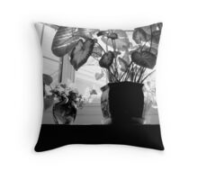 The Bay Window - Shadows and all    ^ Throw Pillow