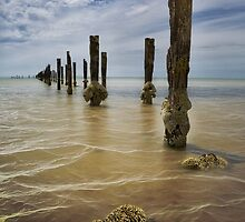 Clifton Springs Foreshore by Margaret Metcalfe