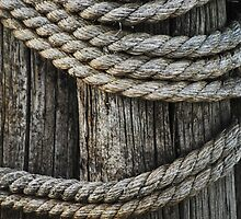 Nautical Needs by Laurie Minor