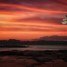 Island In The Stream by TOM YORK