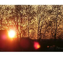 Sunset Behind Trees Photographic Print
