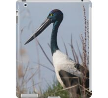 Restful iPad Case/Skin