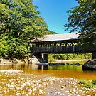 Artists'  Covered Bridge by Mary Carol Story
