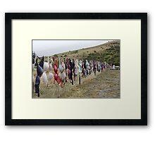 Cardrona Bra Fence NZ Framed Print