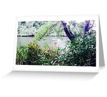 River view 2 Greeting Card