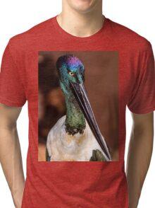 Jabiru portrait, Port Douglas, Queensland, Australia Tri-blend T-Shirt