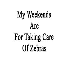 My Weekends Are For Taking Care Of Zebras  Photographic Print