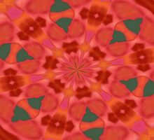 Succulent Red and Yellow Flower Abstract 3 by taiche