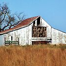 Old Hay Barn by debidabble
