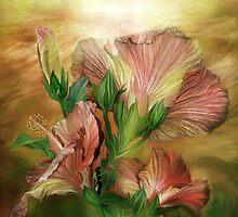 Hibiscus Sky - Peach by Carol  Cavalaris
