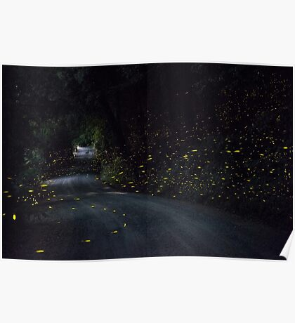 Firefly Road Poster