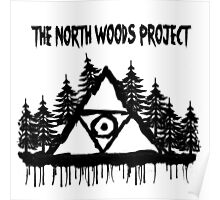 The North Woods Project Poster