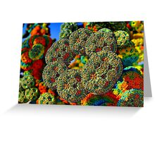Ring Formations Greeting Card