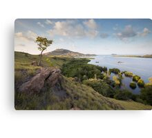 Komodo Mangroves Canvas Print
