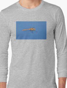 Dragon in Flight Long Sleeve T-Shirt