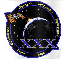 Expedition 30 Mission Patch Poster