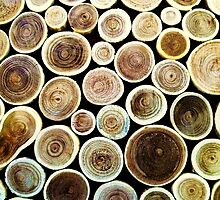 Circles by Joanne Pickering