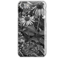 Coneflowers in Dow Gardens 2 BW iPhone Case/Skin