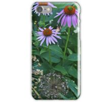Coneflowers in Dow Gardens 2 iPhone Case/Skin
