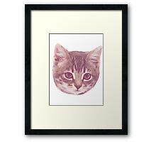 Vintage Kitten  Framed Print