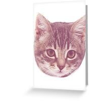 Vintage Kitten  Greeting Card