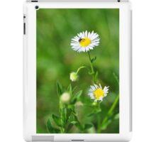 Insect on tiny daisy iPad Case/Skin