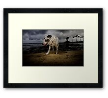 Time to go home.  Framed Print