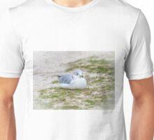 Do Not Disturb the Gull Unisex T-Shirt