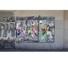 Art or vandalism Photographic Print