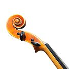Abstract Violin scroll  by funkyworm
