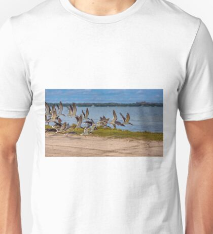 Black Skimmers Coming In For A Landing Unisex T-Shirt