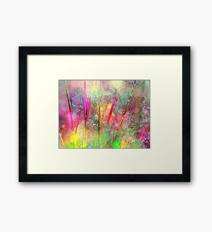 Field Of Coloured Grass Framed Print