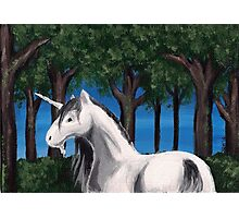 Unicorn in the Forest Photographic Print