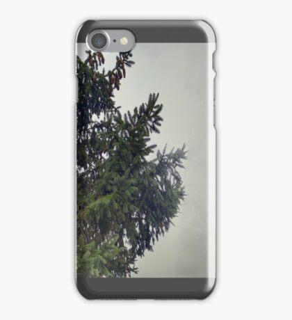 Pine Sky iPhone Case/Skin