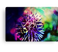 Colourful Creations III Canvas Print