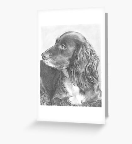 Cocoa Greeting Card