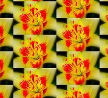 Abstract of a Lily by Deborah Crew-Johnson